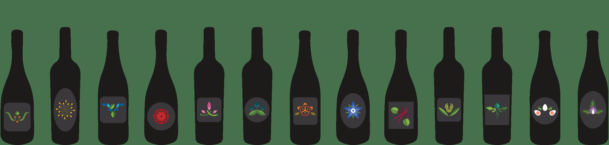 cantina vini naturali 800x450 1